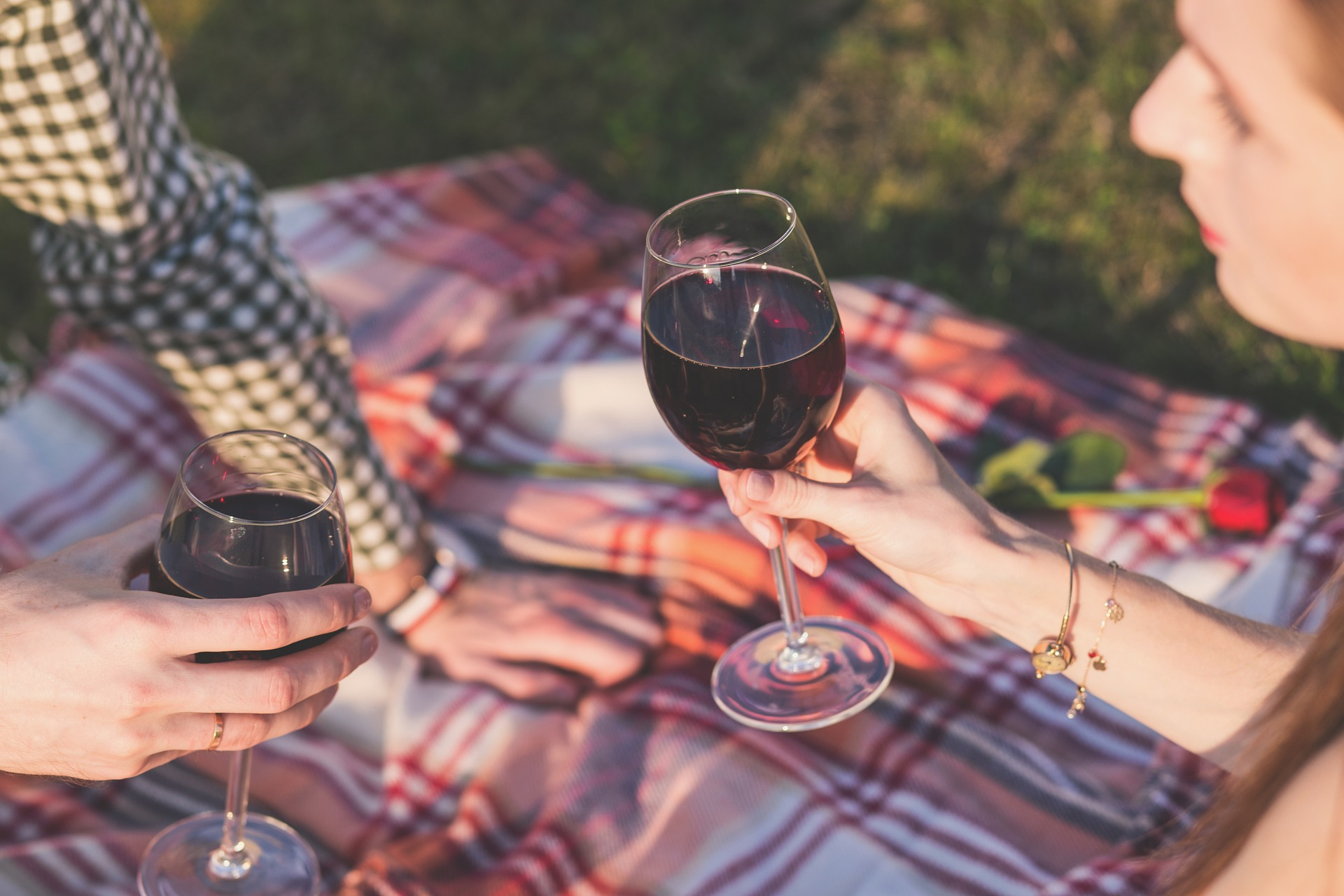 picnic vino