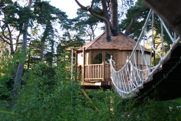 caba as de madera en blue forest viviendu