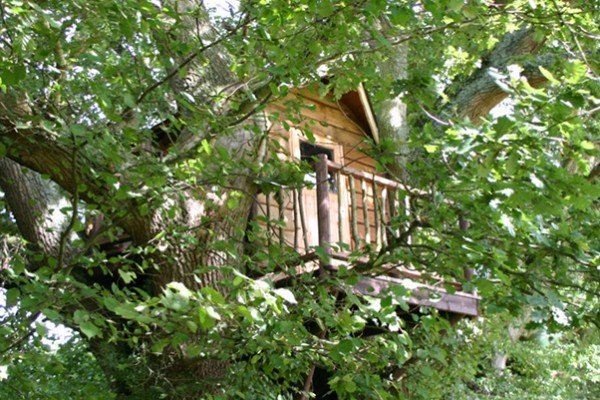 Cabañas de madera en Blue Forest 5295