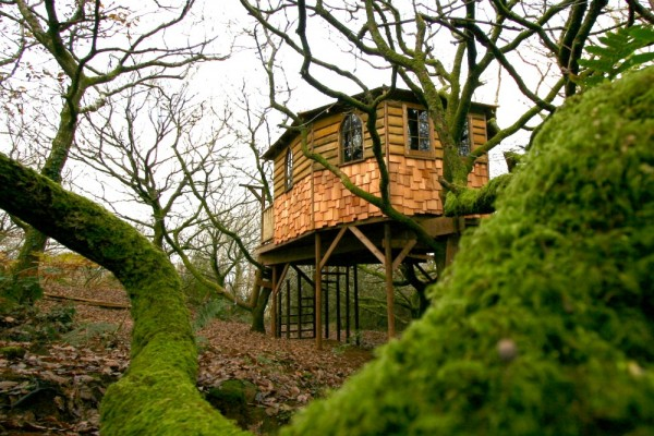 Cabañas de madera en Blue Forest 5301