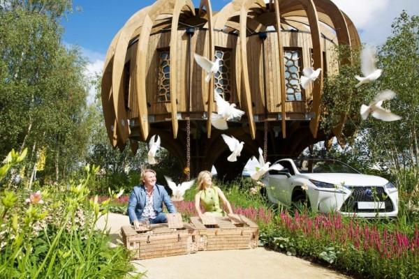 Caba as de madera en blue forest viviendu - Como hacer una cabana de madera ...