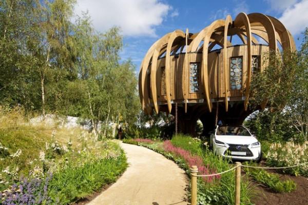 Cabañas de madera en Blue Forest 5288