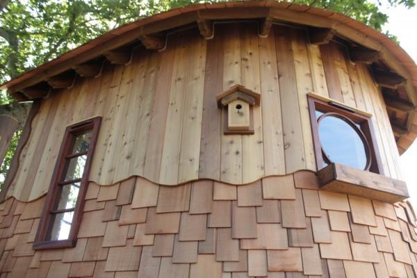 Cabañas de madera en Blue Forest 5289