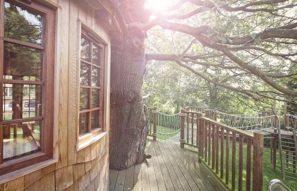 Cabañas de madera en Blue Forest 5291