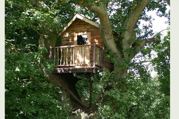 Cabañas de madera en Blue Forest 5294