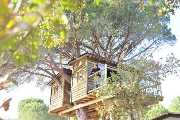 Cabañas de madera en Casárbol 596