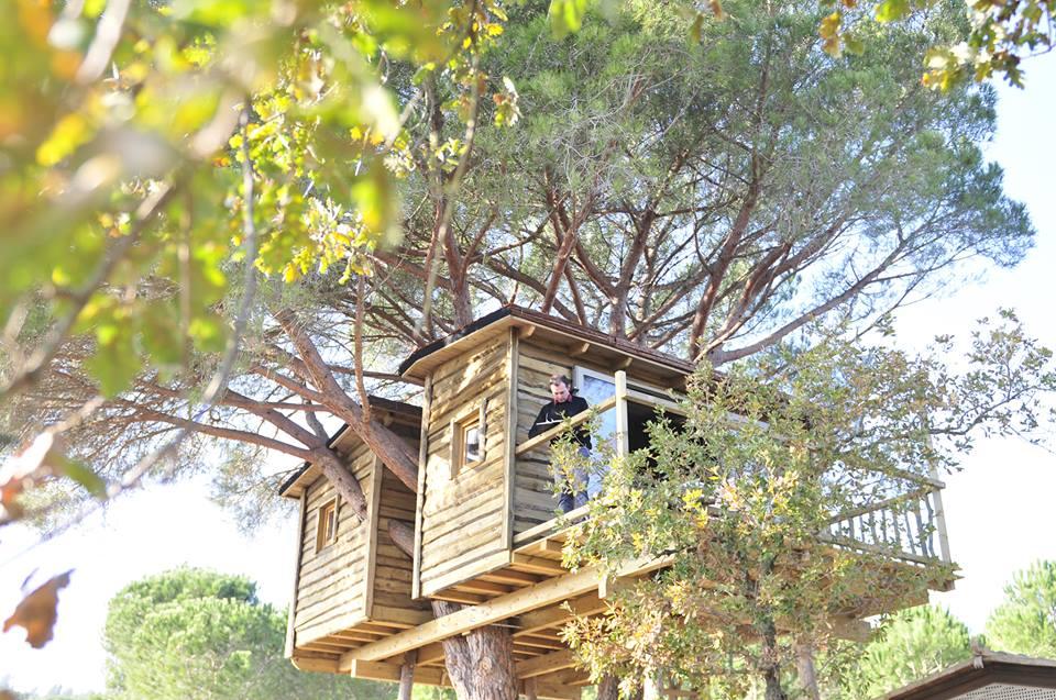 cabaña árbol glamping