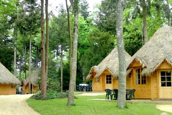 Cabañas de madera en Madera Siglo XXI – Casas Naturales 2636