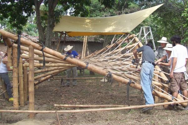 Casa increíbles en Bambusa 1063