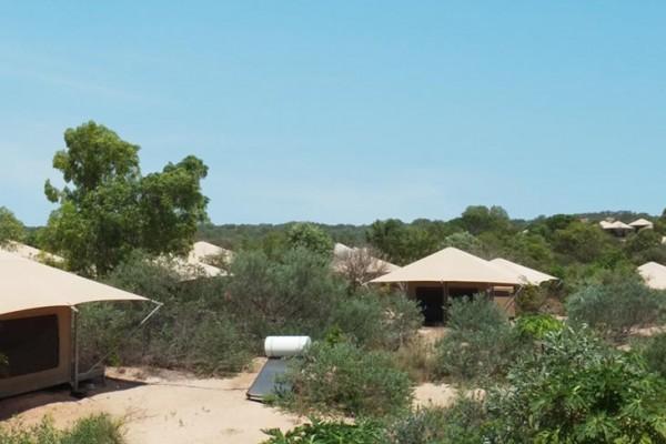 Jaimas, Tipis y Yurtas en Eco Structures 5583