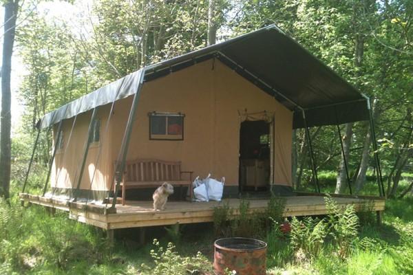 Jaimas, Tipis y Yurtas en Safari Tents 5110
