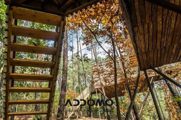 Cabañas de madera en Addomo 9347