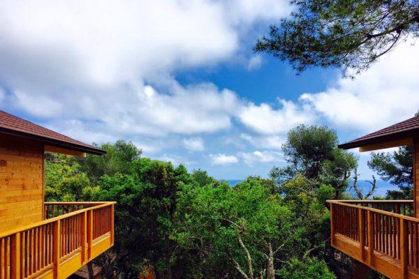 Casas de madera en Natura y Confort 16665